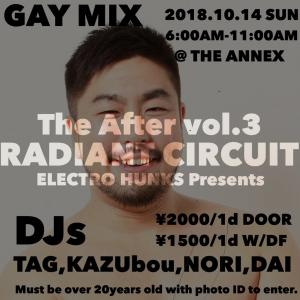The After vol.3 ELECTRO HUNKS Presents  - The ANNEX - 1024x1024 115.8kb